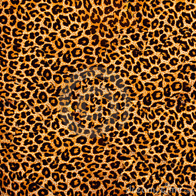 Free Leopard Fabric Stock Photography - 4984982