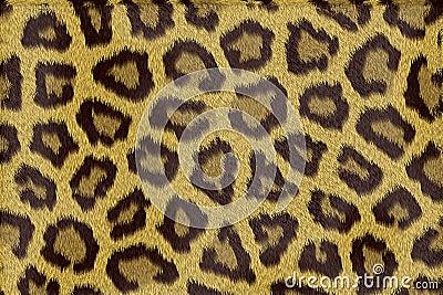 Leopard fur texture