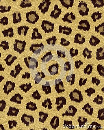 Leopard medium spots short fur