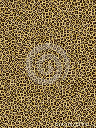 Free Leopard Pattern Royalty Free Stock Image - 932496