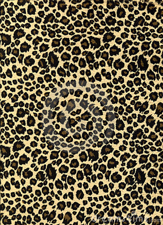 Free Leopard Print Fabric Texture Stock Photo - 3449610