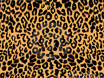 animal prints photos images pictures dreamstime id14760 - Animal Pictures To Print Free