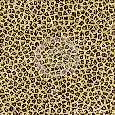 Free Leopard Skin Stock Photo - 2679510
