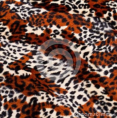 Free Leopard Skin Pattern Royalty Free Stock Photo - 29886975