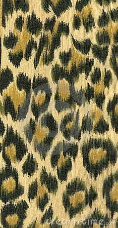 Free Leopard Skin Pattern I Stock Photography - 490392