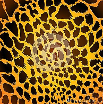Leopardpelz