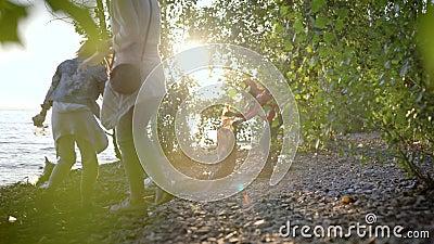 Les bénévoles en écologie féminine nettoient la zone côtière pendant la journée d'été, regardent à travers les feuilles d'arbuste banque de vidéos