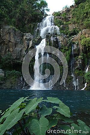 Les Cormorans waterfall at Saint Gilles on Reunion