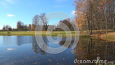 Les derniers jours de l'automne d'or dans Trigorskoye Pushkinskie sanglant, Russie banque de vidéos