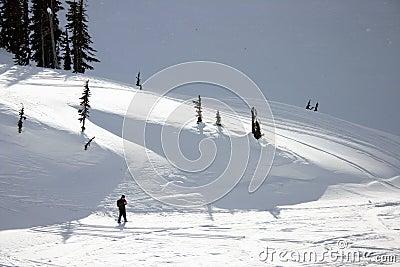 Les gens snowshoeing