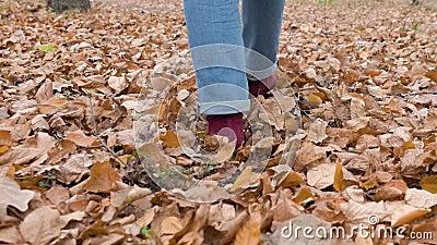 Les jambes des femmes se portent sur le feuillage jaune Feuillage de serpent Vue arrière Mouvement lent clips vidéos
