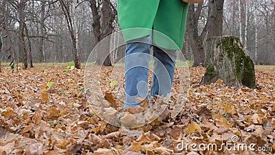 Les jambes des femmes se portent sur le feuillage jaune Feuillage de serpent Vue avant Mouvement lent banque de vidéos