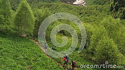 Les touristes avec des enfants en randonnée avec des sacs à dos marchent sur une belle pente verte banque de vidéos