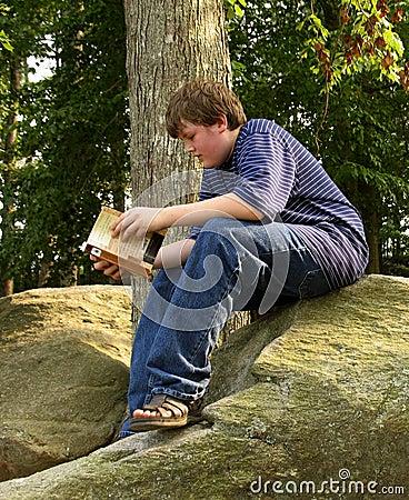 Lesen auf dem Felsen