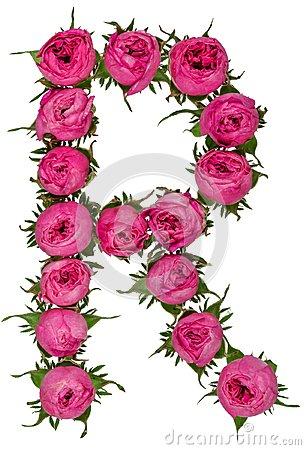 Free Letter R Alphabet From Flowers Of Roses, Isolated On White Backg Royalty Free Stock Photography - 106983457