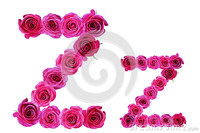Z Alphabet In Rose Letter z of roses,alphabet rose flower season plant symbol style text ...