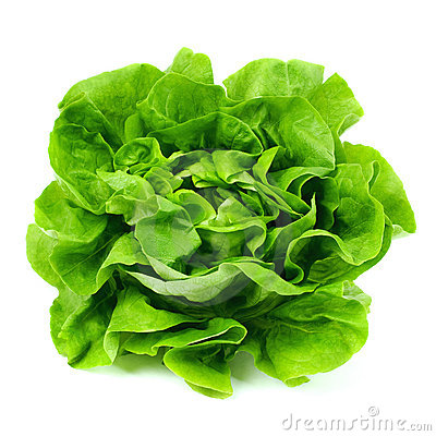 Free Lettuce Stock Photography - 8115562