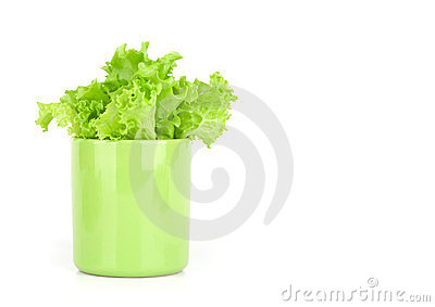 Lettuce leaves in a cup