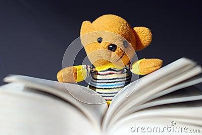 Lettura dell orso del giocattolo