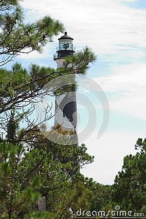 Leuchtturm durch die Bäume