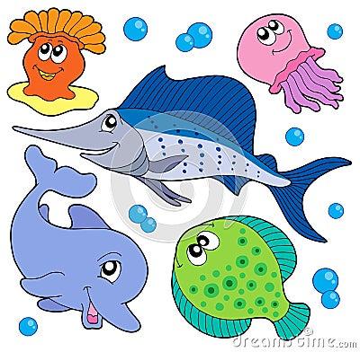 Leuke mariene diereninzameling 2