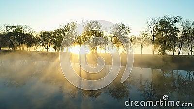 Levantamento do sol por cima do beco do parque perto do lago vídeos de arquivo
