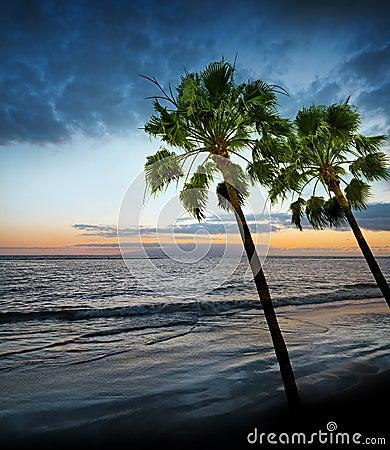 Lever de soleil et océan