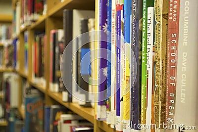 Library Books on a Bookshelf