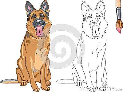 Libro de colorear del pastor alemán sonriente del perro