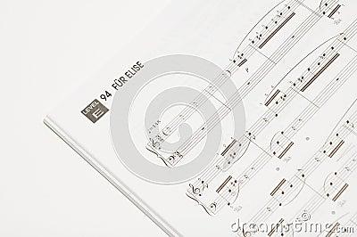 Libro di canzone