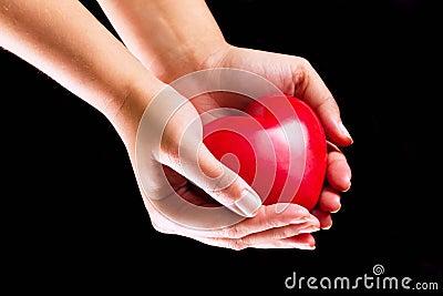 Liebe in Ihren Händen