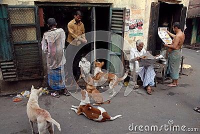 Daily Life of Old Kolkata Editorial Stock Image
