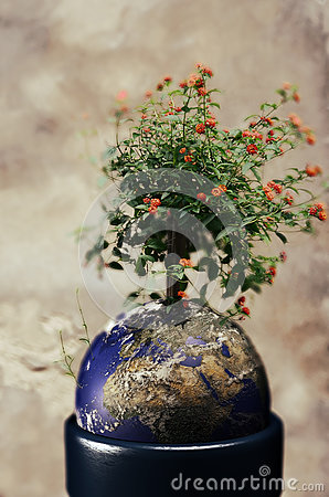 Free Life On Earth Stock Image - 92754031