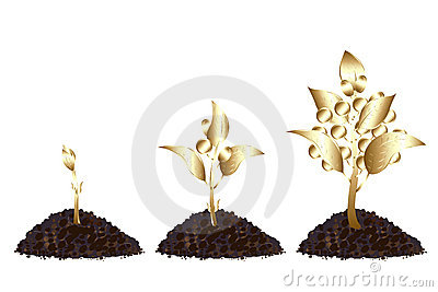 Life process of Golden Tree. Vector