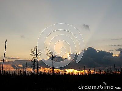Lifeless sunset
