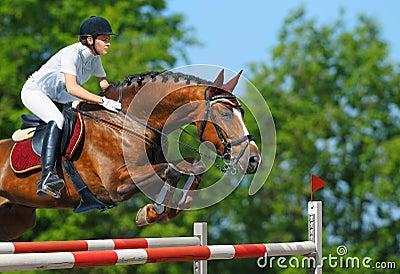 Ligação em ponte equestre - horsewoman e égua do louro