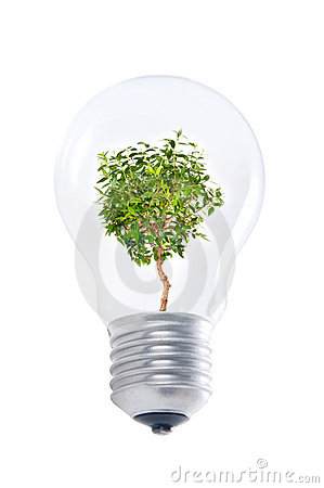 Ligh bulb