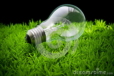Ligh bulb on green grass