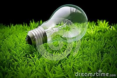 Ligh bulb on green grass