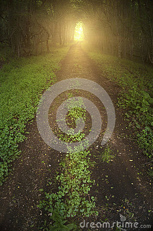 Free Light At The End Of Tunnel Stock Images - 43061214