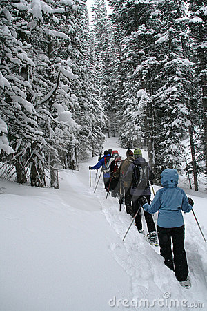 Light blue parka, snowshoe hikers in woods,