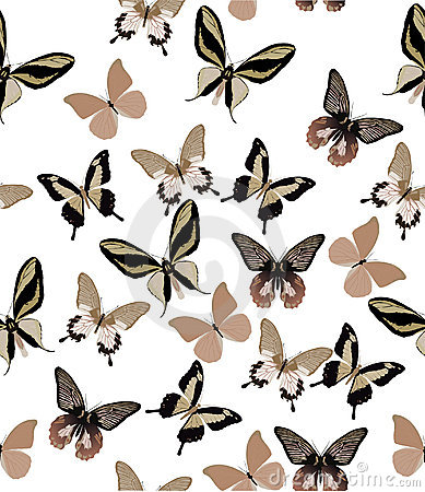 Light brown butterfly background