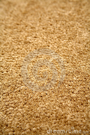 how to clean light colored carpet