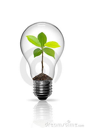 Free Light Bulb Royalty Free Stock Photo - 19635755