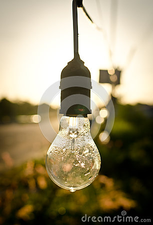 Free Light Bulb After Rain Stock Photo - 26441780