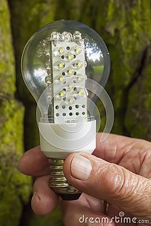 Light bulb held in palm