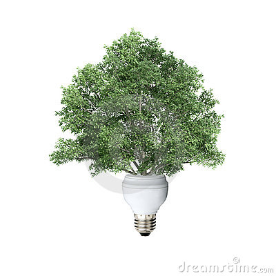 Light Bulb and Tree