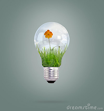 Free Light Bulb With Beautiful Flower Inside Royalty Free Stock Photography - 20291387