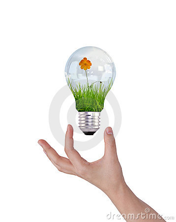 Free Light Bulb With Beautiful Flower Inside Stock Image - 20291411