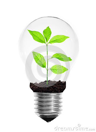 Free Light Bulb With Plant Stock Photo - 29415370
